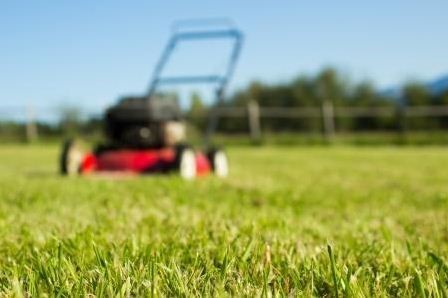 How mowing the lawn can help Finance gain better influence
